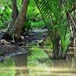 Phuket i okoliczne wysepki