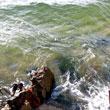 Neuroshima beach