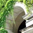 Uniwersytet Humboldta