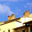 Dachy Arezzo