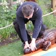 Bez dodatkowej opłaty można sobie upolować krokodyla